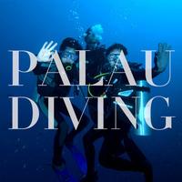 Palau Diving 有证潜水1日外海深潜3瓶气