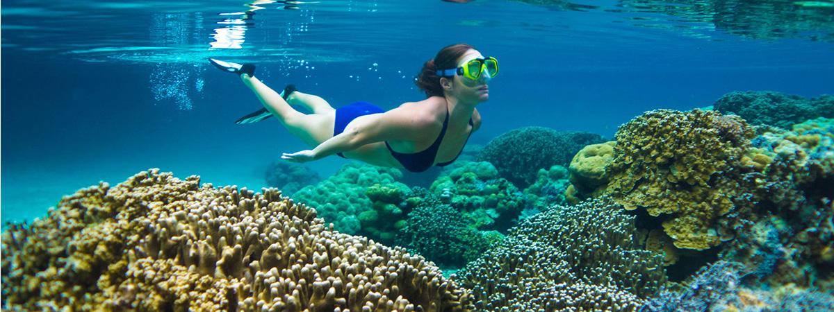 壁纸 海底 海底世界 海洋馆 水族馆 桌面 1200_450