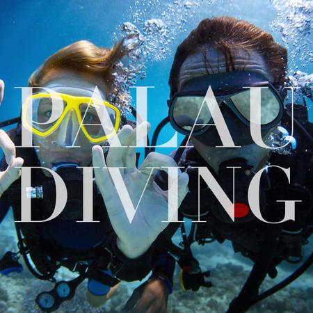 Palau Diving 有证潜水半日外海深潜套餐(2瓶气)